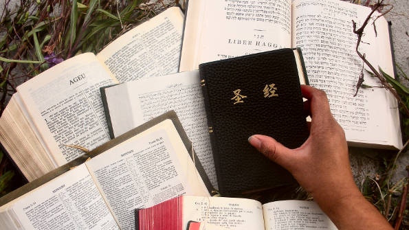 Image of many Bibles in different translations